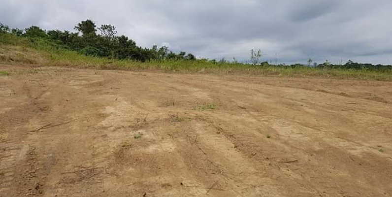GeoBienes - Terreno en venta Urbanización Lomas del Bosque  - Plusvalia Guayaquil Casas de venta y alquiler Inmobiliaria Ecuador