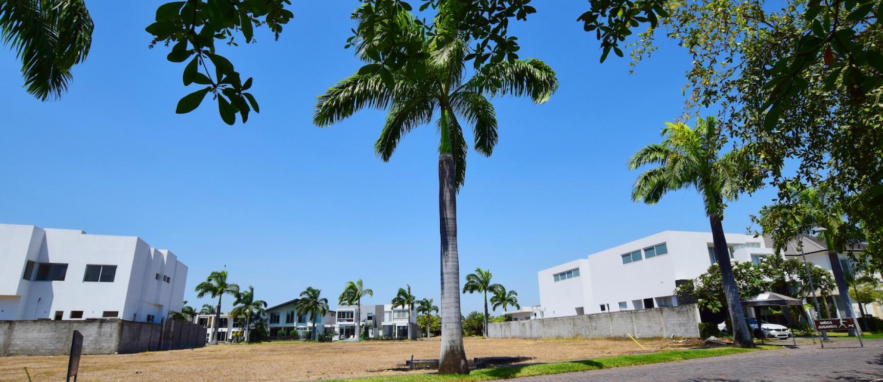 GeoBienes - Terreno en venta ubicado en La Isla Mocolí, Vía Samborondón - Plusvalia Guayaquil Casas de venta y alquiler Inmobiliaria Ecuador