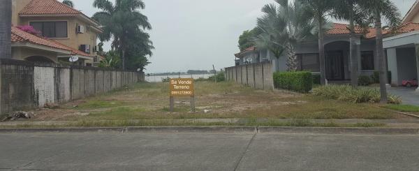 Vendo terreno en Samborondón con 784 m2 al río - Primeros Kilómetros